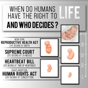 Abortion is murder! Two Idaho Legislators Intend to Put an End to the Heinous Act.