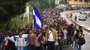 Illegal Immigration: Nipping It in the Bud!
