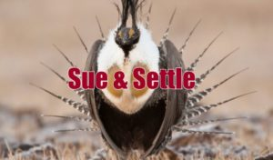 Interior Department directive sheds light on shady sue & settle deals