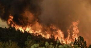 Here We Go Again: Leftist Eco Policies, Not 'Climate Change' Causing Western Wildfires