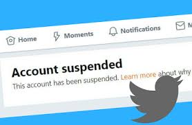 I've Been Banned by Twitter, You're Next